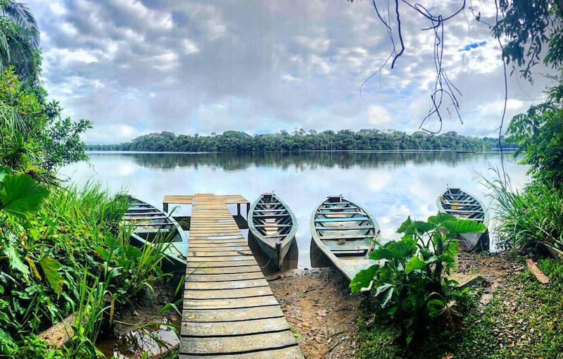 Tambopata Amazon Peru Tour (Posadas Amazonas), Peruvian Amazon Tours from Cusco
