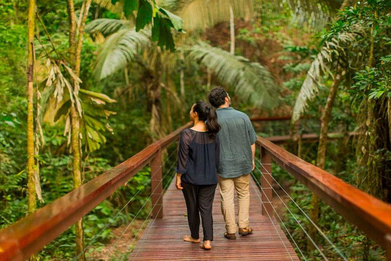 Tambopata Amazon Peru Tour (Posadas Amazonas), Amazon Rainforest and Machu Picchu Tours, Peruvian Amazon Tours from Cusco